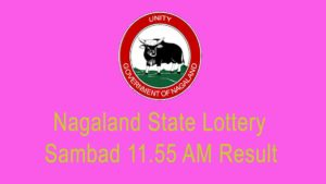 {LIVE} : Nagaland State Lottery Sambad (11:55 AM) Result 16.1.2021 Today